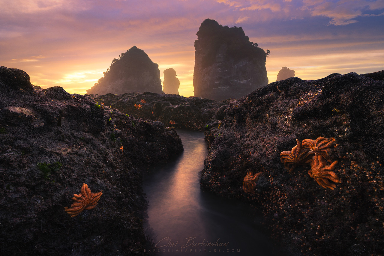 Motukiekie Rocks, New Zealand