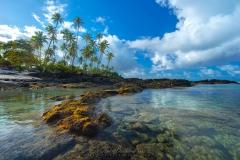 Samoan Coastline